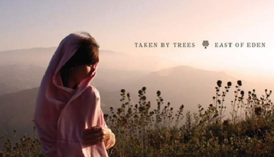 Taken By Trees