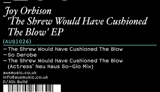 Joy Orbison - The Shrew
