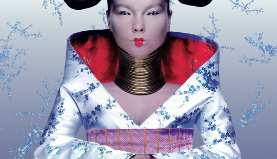 From http://largela.com/wp-content/uploads/Bjork-homogenic-Large-LA.jpg