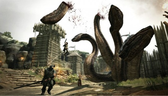 From http://www.capsulecomputers.com.au/wp-content/uploads/2012/05/dragons-dogma-review-5-600x337.jpg
